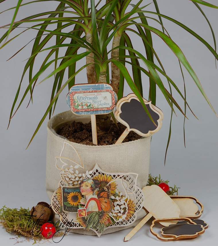Tati, flowerpot, Wycinanca, Photo 1