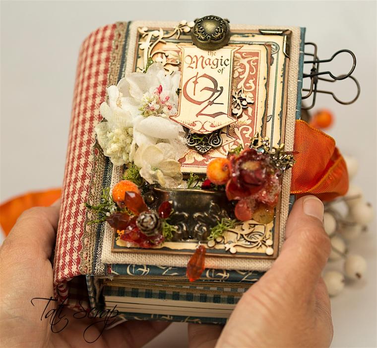 Tati Scrap, The Magic Of Oz, Mini Album, Photo 16