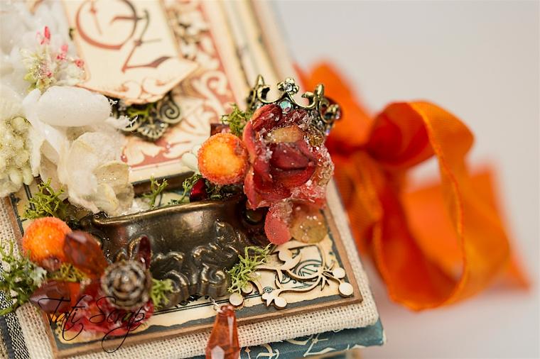 Tati Scrap, The Magic Of Oz, Mini Album, Photo 3